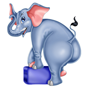 Elephant sex clip, free porn ass xxx